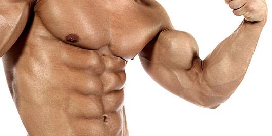 wichtige nährstoffe für muskelaufbau